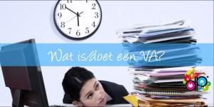 Blog_DP_Wat is een VA